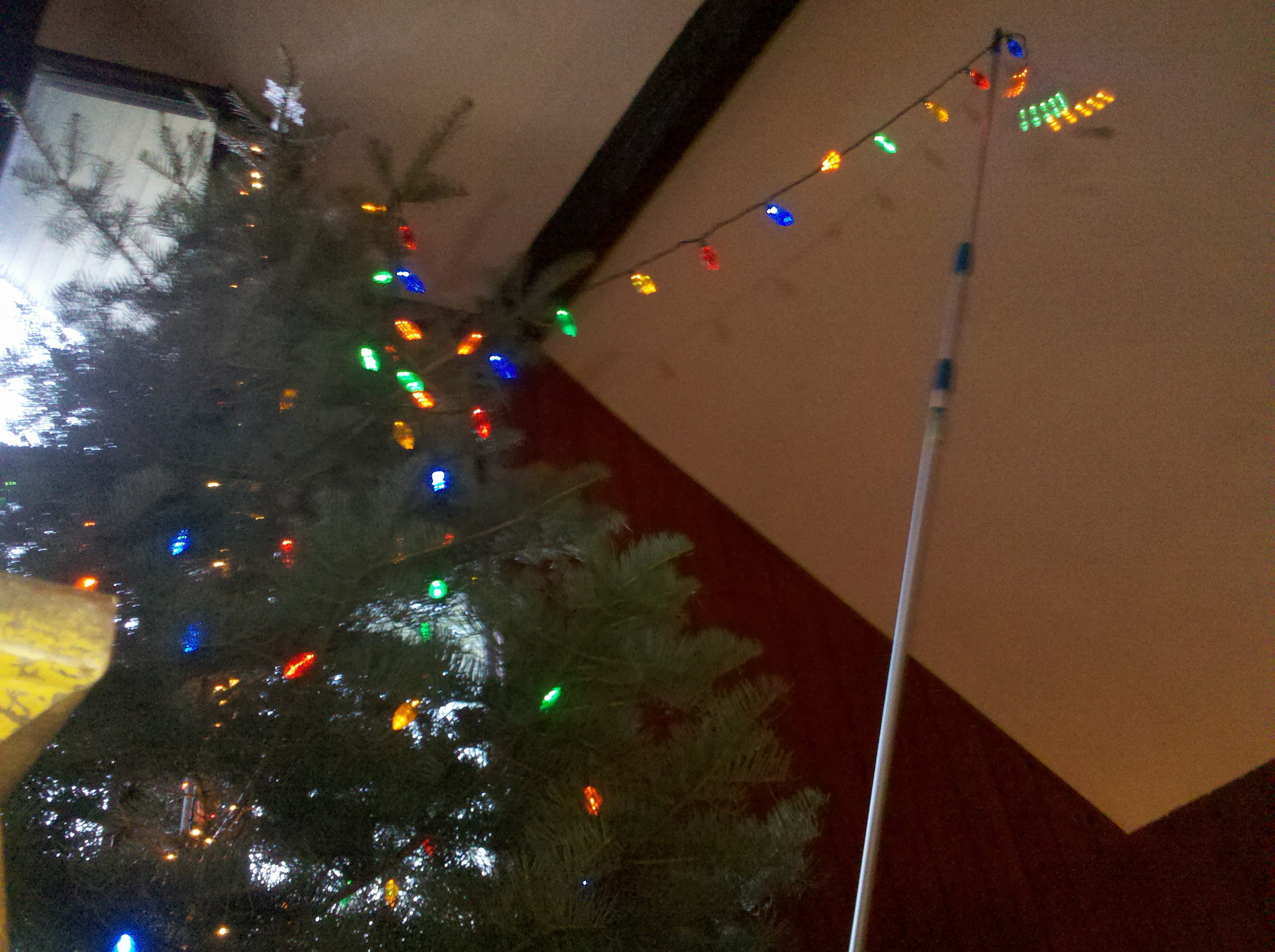 Stringing Lights On Giant Tree Extension Pole Hook Ladder