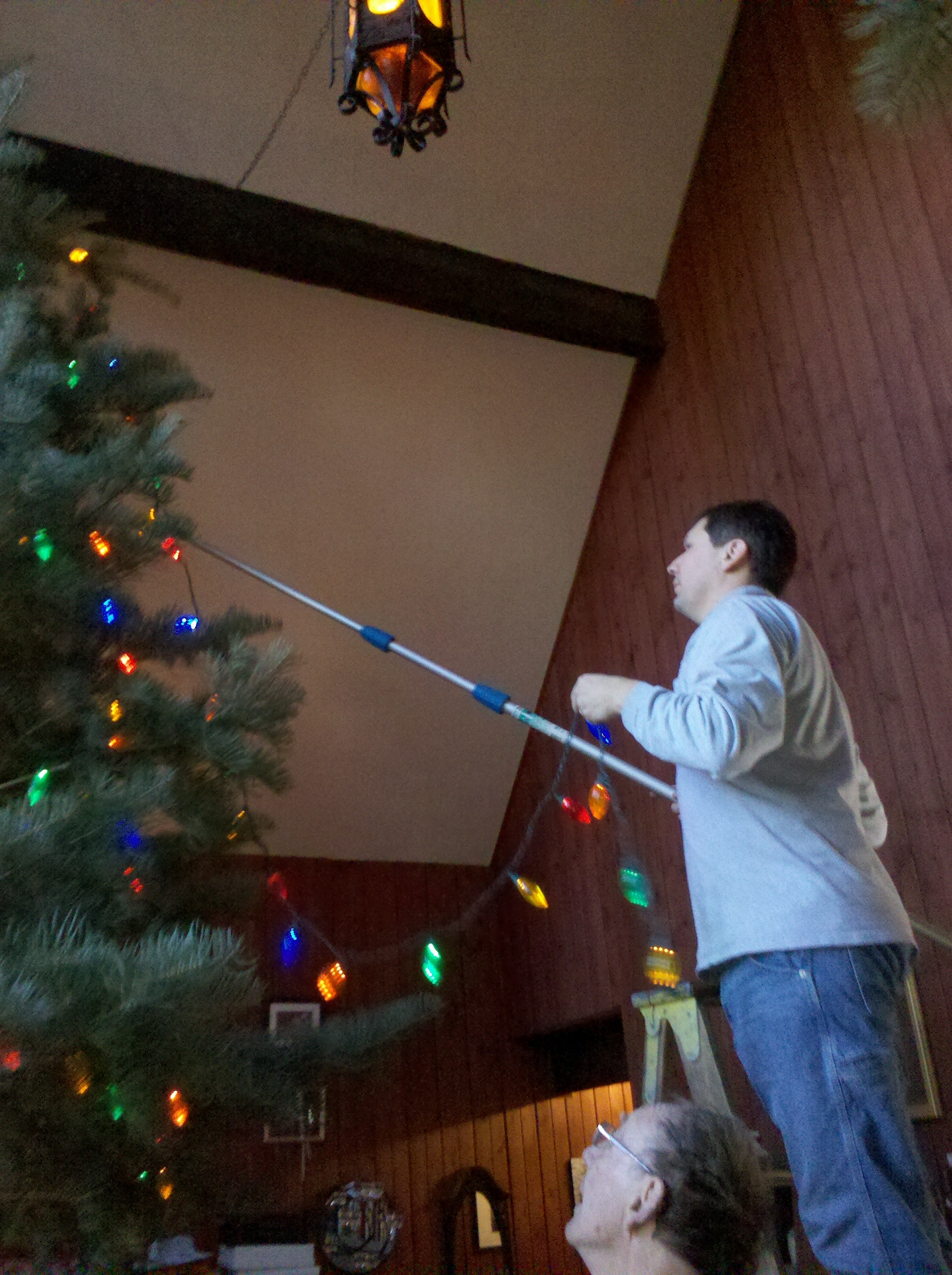 Decorating Giant Tree Extension Pole Hook Ladder