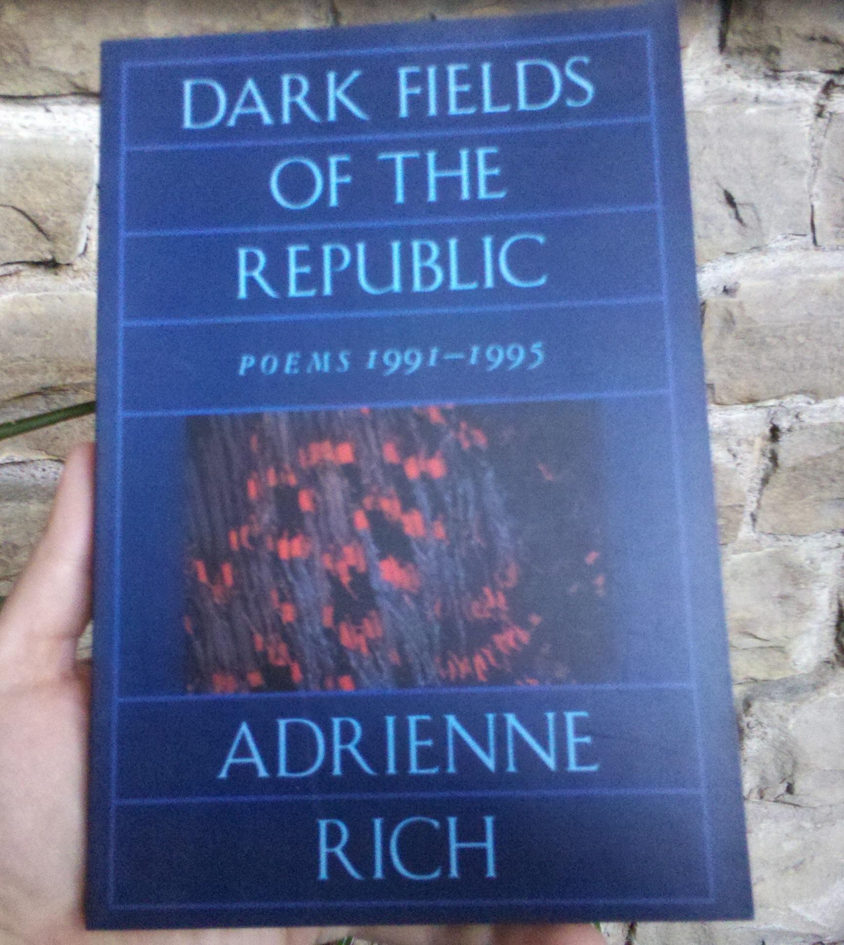 Dark Fields Book