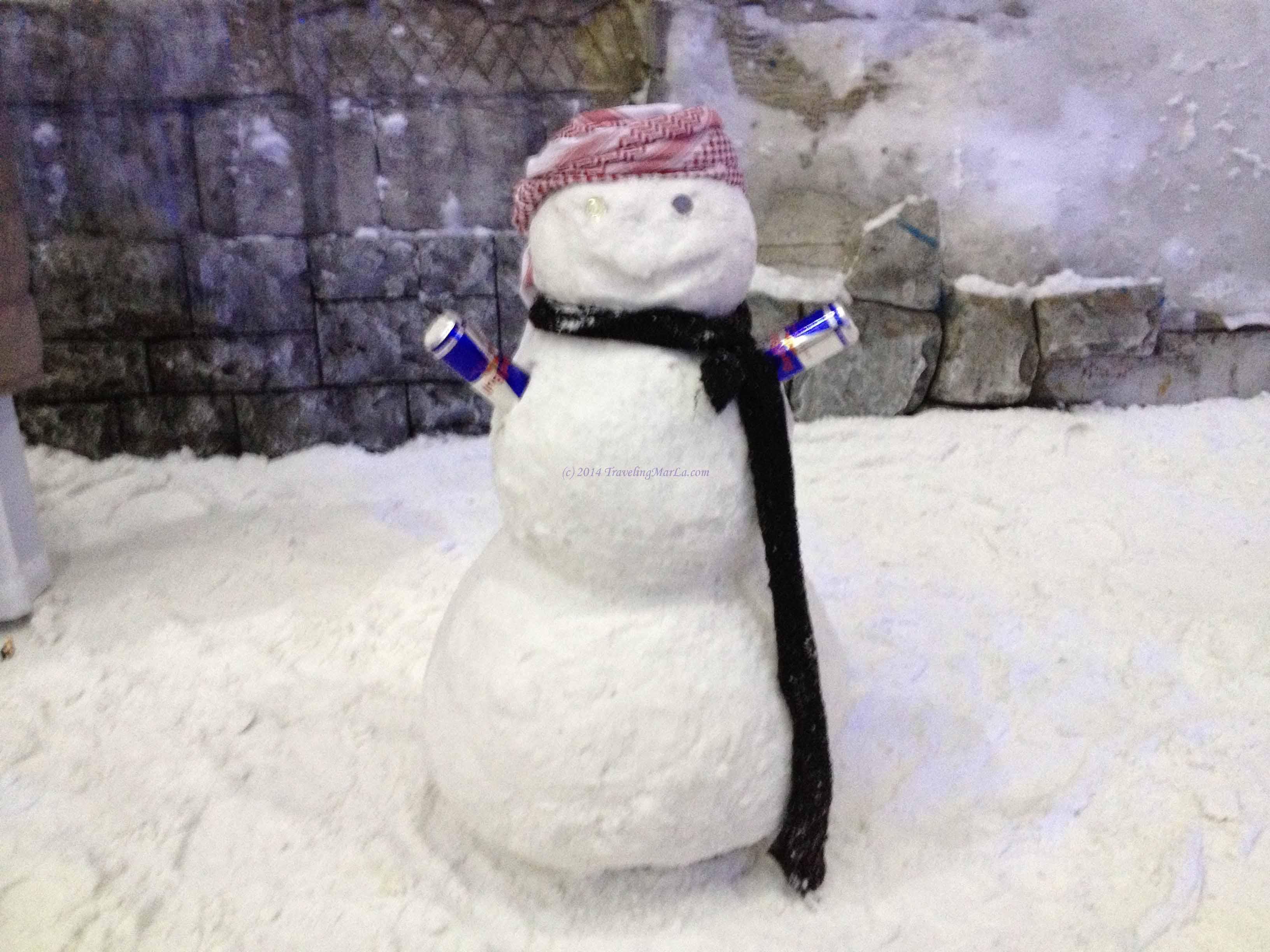 travel Ski Dubai UAE